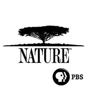 Nature PBS